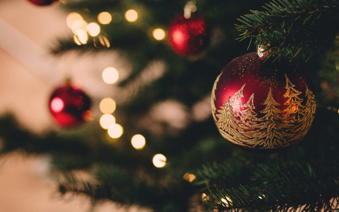 A red Christmas ornament hangs from a tree.