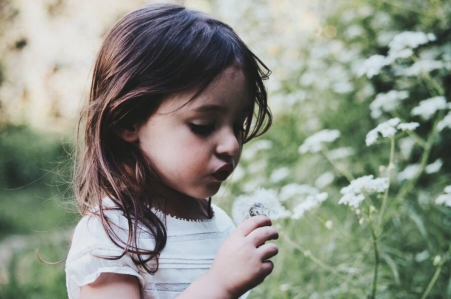 4-year old girl with dark brown hair blows on a dandelion
