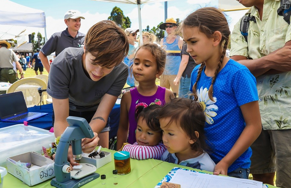 When it comes to family fun Ottawa has plenty to offer - have you considered some fun science-based activities at home, though?